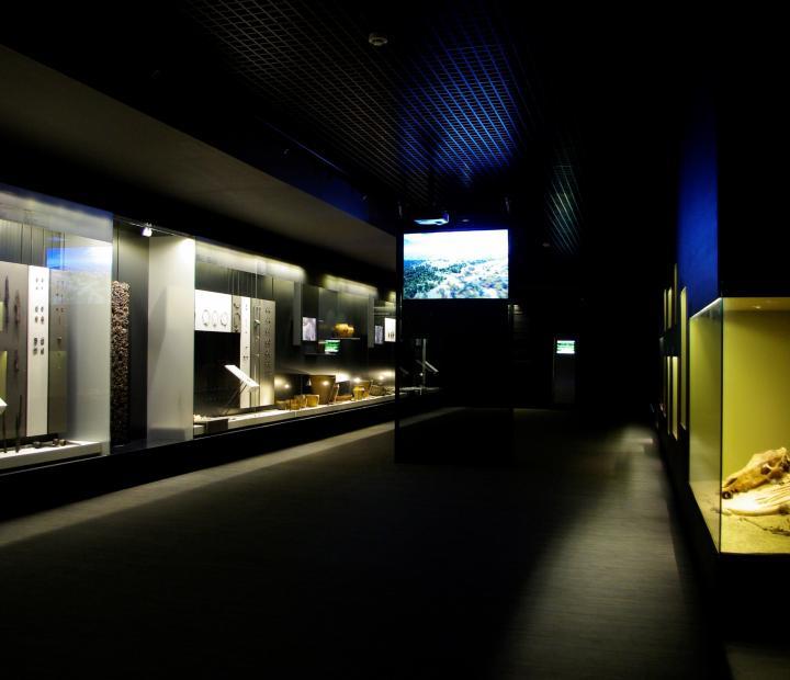 Muziejaus eksponatai